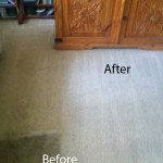 Bedroom-Carpet-Cleaning-Union-City