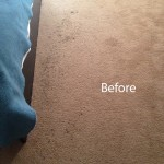 Bedroom-Carpet-Cleaning-Union-City-A