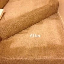 stairs carpet cleaners union city