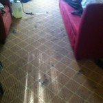Union-City-Carpet-Clean-before
