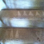Union-City-Stairs-Carpet-Cleaning