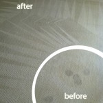 Union-City-Wine-Stain-Carpet-Cleaning