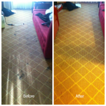 union city ca carpet cleaning